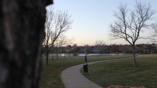 A wide shot of Lakeshore. Interact decided to can-o-treat at Lakeshore, a neighborhood close by Rangeview High School.