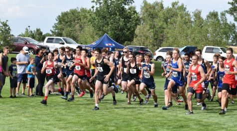 This was the start a boys race in the Aurora City Championship meet. The meet took place on August 22nd. (Mary Macleay)
