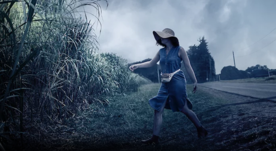 Natalie looks into the tall grass after her son Tobin runs after their dog. The background is very eerie, setting up the feel for the movie to be mysterious and frightening. (Netflix)