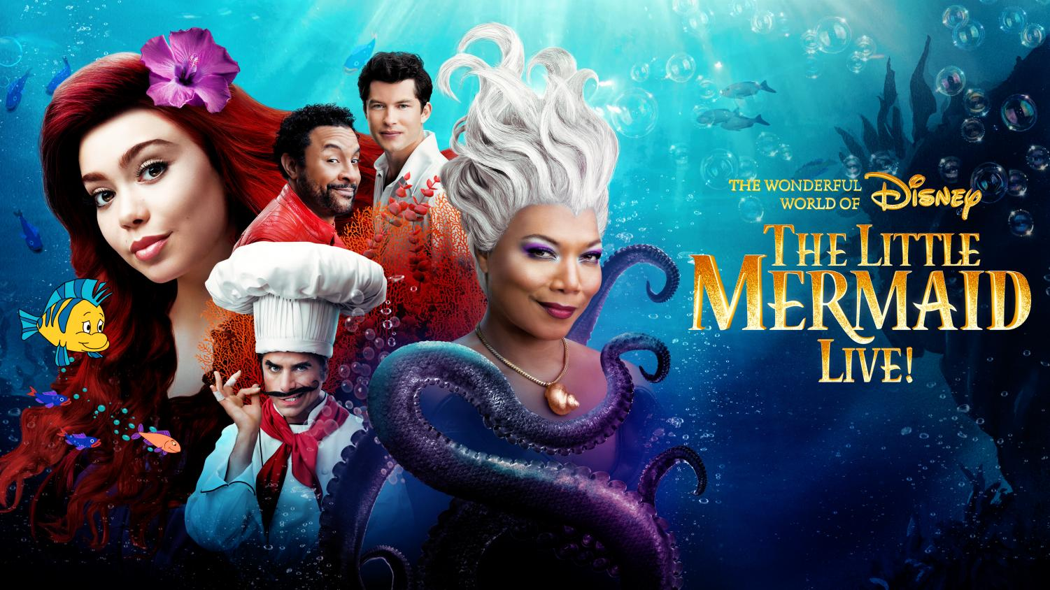 ABC's: The Little Mermaid Live! event aired on November 5th, with many fans looking forward to the event. (ABC)