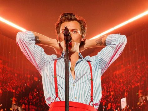 Harry Styles performing in Denver (@hsdaily on twitter)